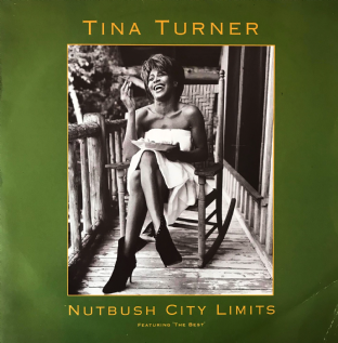 "Tina Turner - Nutbush City Limits (The 90's Version) (12"") (VG-/G++)"